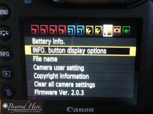 Setting Copyright in camera